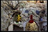 新北市三芝區貝殼廟(2顆星):TB8A9512.jpg