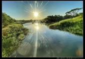 桃園市大溪區月眉人工濕地生態公園(3顆星):1101 036.JPG