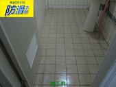無編號-1-25防滑劑 握把刷與兔毛刷施工:1浴室磁磚地面專用防滑劑-握把刷 (1).JPG