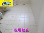 無編號-1-25防滑劑 握把刷與兔毛刷施工:1浴室磁磚地面專用防滑劑-兔毛刷 (1).JPG