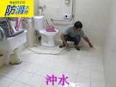 無編號-1-25防滑劑 握把刷與兔毛刷施工:1浴室磁磚地面專用防滑劑-兔毛刷 (5).JPG