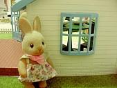 0814 娃娃屋:我真是枉然..(撩雷n→台語)