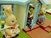 0814 娃娃屋:原來是兔妹妹