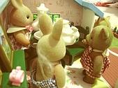 0814 娃娃屋:唉唷,地方就是這麼小..