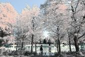 2013黃金夢幻湖~雲山水:2U4A6547.JPG