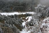 2015.2.10合歡山公路雪景:2U4A8178.JPG