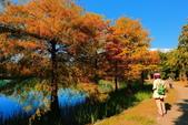 2013黃金夢幻湖~雲山水:2U4A6602.JPG