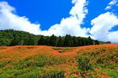 赤柯山+六十石山+太麻里的金針花田2013:2U4A2802.JPG