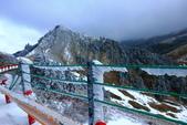 2015.2.10合歡山公路雪景:2U4A8306.JPG