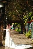 正妹小孟婚紗@台中植物園:2U4A6736.JPG