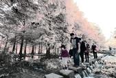 2013黃金夢幻湖~雲山水:2U4A6629.JPG