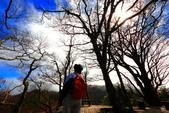 太平山莊~翠峰湖~山毛櫸步道~見晴懷古步道:2U4A4356.JPG