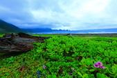 2015蘭嶼之美-獨木舟+海岸岩石:2U4A9990.JPG