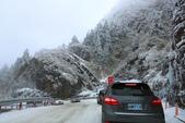 2015.2.10合歡山公路雪景:2U4A8160.JPG