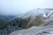 2015.2.10合歡山公路雪景:2U4A8220.JPG