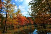 2013黃金夢幻湖~雲山水:2U4A6672.JPG
