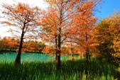 2013黃金夢幻湖~雲山水:2U4A6614.JPG