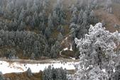 2015.2.10合歡山公路雪景:2U4A8183.JPG
