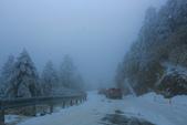 2015.2.10合歡山公路雪景:2U4A8161.JPG