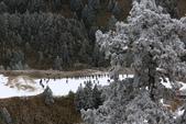 2015.2.10合歡山公路雪景:2U4A8181.JPG
