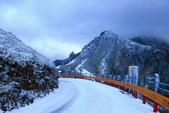 2015.2.10合歡山公路雪景:2U4A8304.JPG