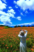 赤柯山+六十石山+太麻里的金針花田2013:2U4A2733.JPG