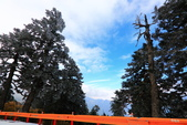 2015.2.10合歡山公路雪景:2U4A8234.JPG