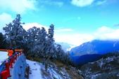 2015.2.10合歡山公路雪景:2U4A8285.JPG