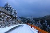2015.2.10合歡山公路雪景:2U4A8300.JPG