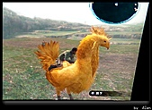 AJen玩手機°陸行鳥°:02_太空戰士13-陸行鳥.jpg