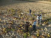 2010.09.23~2010.10.03土耳其:20100926熱氣球 (55).JPG