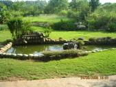 迦南園:水池.jpg