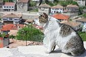 土耳其(一)-200804:IMG_0438.JPG