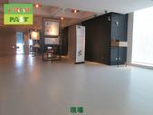 1025 飯店浴室磁磚地面防滑止滑施工工程:飯店浴室磁磚地面防滑止滑施工工程2-1 (3).JPG