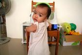 2010.09.26 可菲週歲生日:20100917可菲站起來了02.JPG