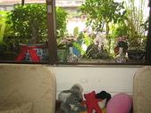 花草、果菜、鳥雀:2006.04.29