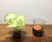 花草、果菜、鳥雀:2020.03.19-03
