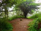 南湖南峰-巴巴山:P7220170.jpg
