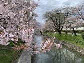 2019 Apr 富山4天:2019-04-11 13.53.00.jpg