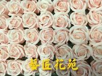 玫瑰精油皂粉紅色 - 手工玫瑰精油皂