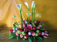 海芋百合玫瑰天鵝絨盆花 - 盆花