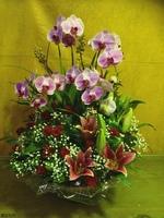 蝴蝶蘭百合玫瑰人造金果盆花 - 盆花