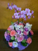 粉蝴蝶蘭小熊粉玫瑰紫桔梗盆花設計 - 盆花