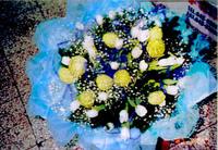 白鬱金香唐棉滿天星花束 - 花束