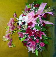蝴蝶蘭百合玫瑰新郎新娘熊花盆花設計 - 盆花
