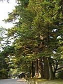 日本之旅 Day4:CIMG7250