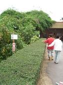豐山生態園區:細心維護