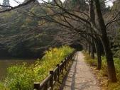 日本之旅 Day4:CIMG7312