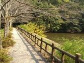 日本之旅 Day4:CIMG7313