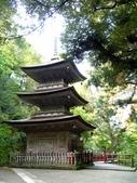 日本之旅 Day4:CIMG7317